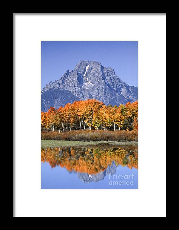 Grand Tetons Framed Print featuring the photograph Fall Reflection At Oxbow Bend by Sandra Bronstein