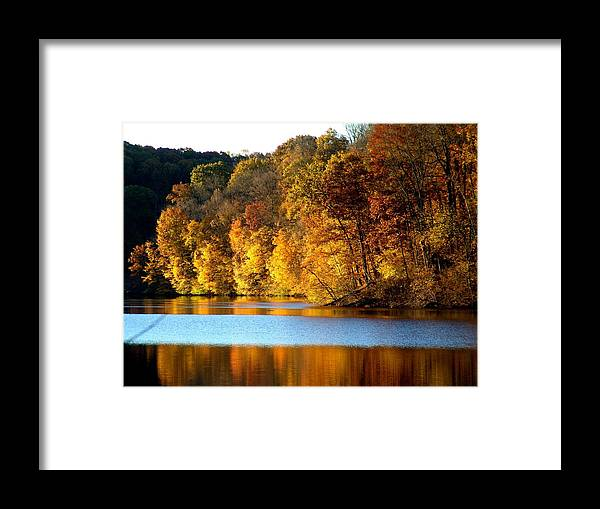 Trees Framed Print featuring the photograph Fall Reflections Of Indiana by Carol Milisen