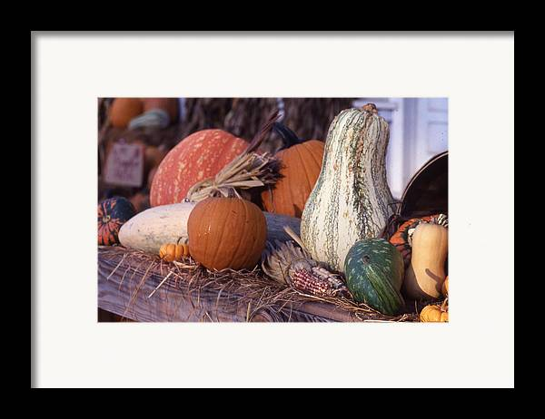 Framed Print featuring the photograph Fall-roadside-produce by Curtis J Neeley Jr
