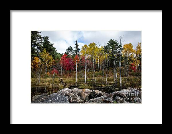 Marj Dubeau Framed Print featuring the photograph Fall Scene 4 by Marj Dubeau