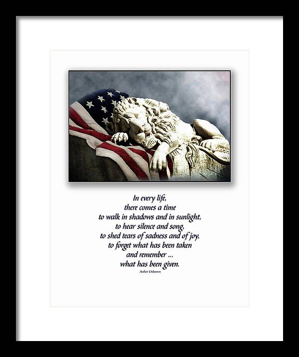 Patriot Flag American Lion Framed Print featuring the photograph Fallen Patriot by Carolyn Staut