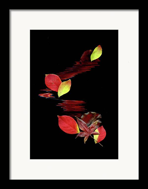 Abstract Art Framed Print featuring the photograph Falling Leaves by Gerlinde Keating - Galleria GK Keating Associates Inc