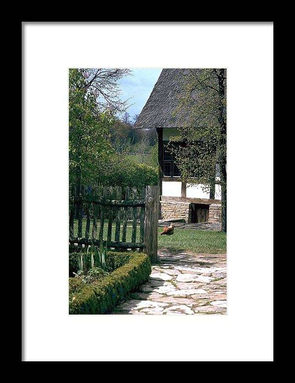 German Framed Print featuring the photograph Farm by Flavia Westerwelle