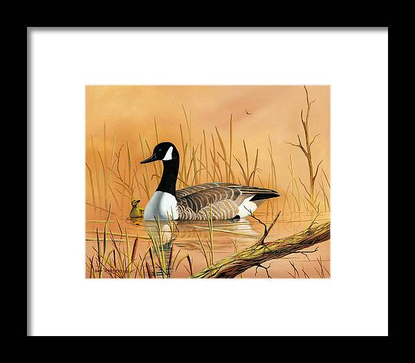 Duck Framed Print featuring the painting Father And Son by Don Griffiths
