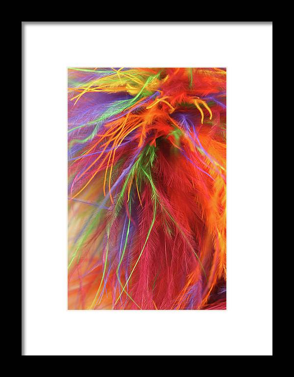 Feathers Framed Print featuring the photograph Feathers by Neva Spell