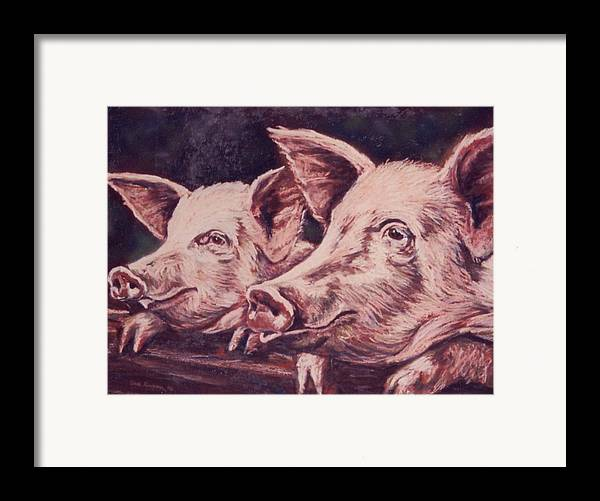 Pigs Framed Print featuring the painting Feedtime by Sue Linton