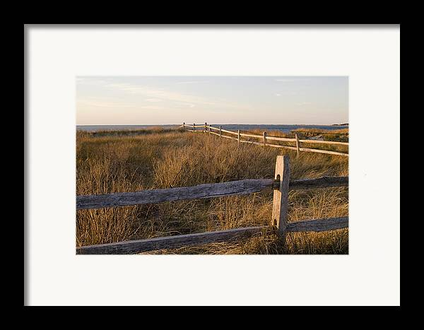 Krauzyk Framed Print featuring the photograph Fence Along The Dunes - Madaket - Nantucket by Henry Krauzyk