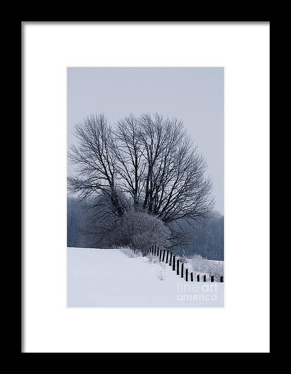 Fence Framed Print featuring the photograph Fence Hills by Cathy Beharriell