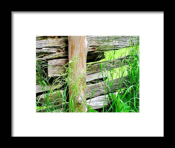 Fence Framed Print featuring the photograph Fence by Ian MacDonald