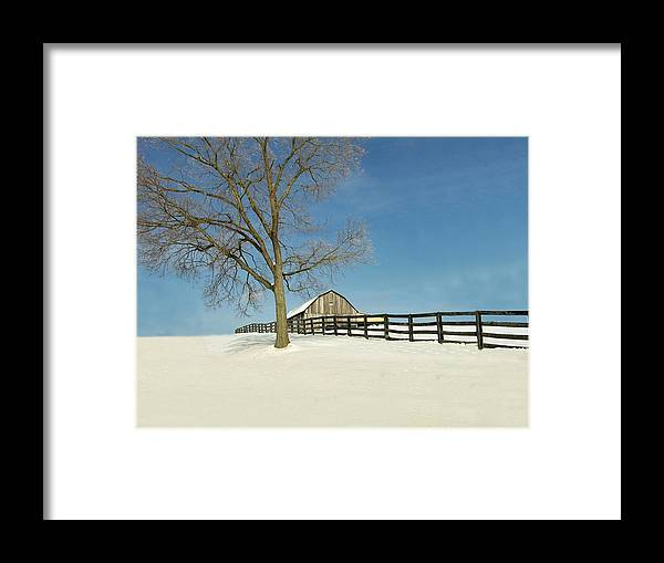 Weather Framed Print featuring the photograph Fence Line by Martie DAndrea