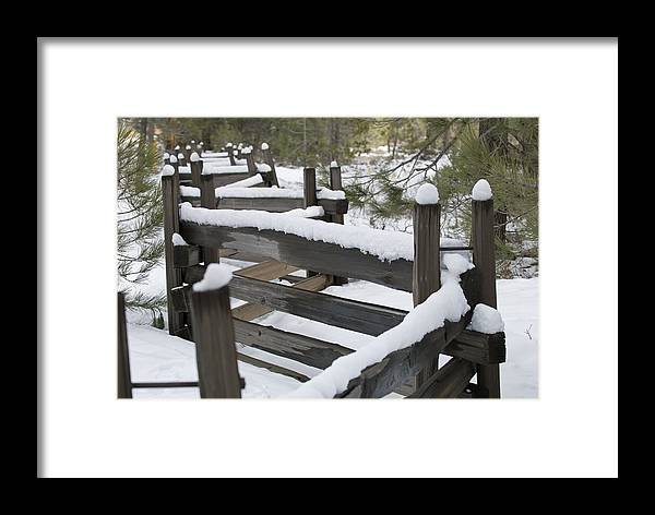 Fences Framed Print featuring the photograph Fence Post At Donner Lake Area Covered by Rich Reid