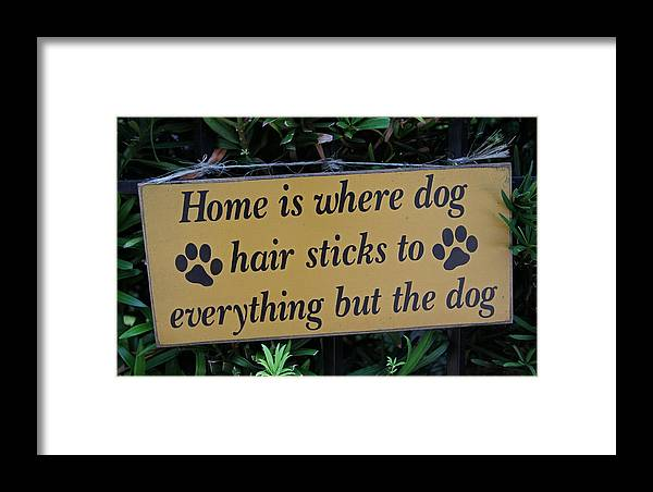 Pet Framed Print featuring the photograph Fence Post With Puppy Saying by Juergen Roth