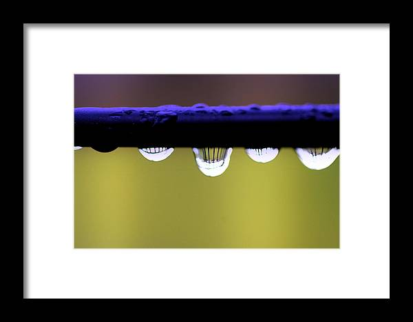 Abstract Framed Print featuring the photograph Fence Reflected by Kerry Reed