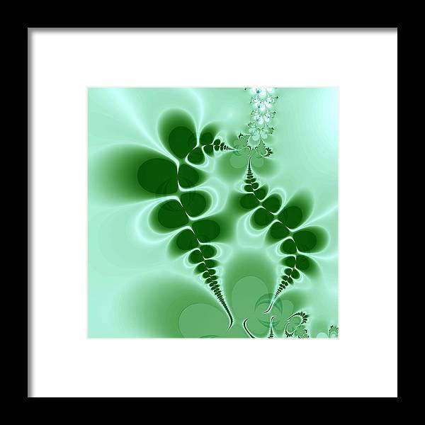 Digital Art Framed Print featuring the digital art Ferns by Amanda Moore