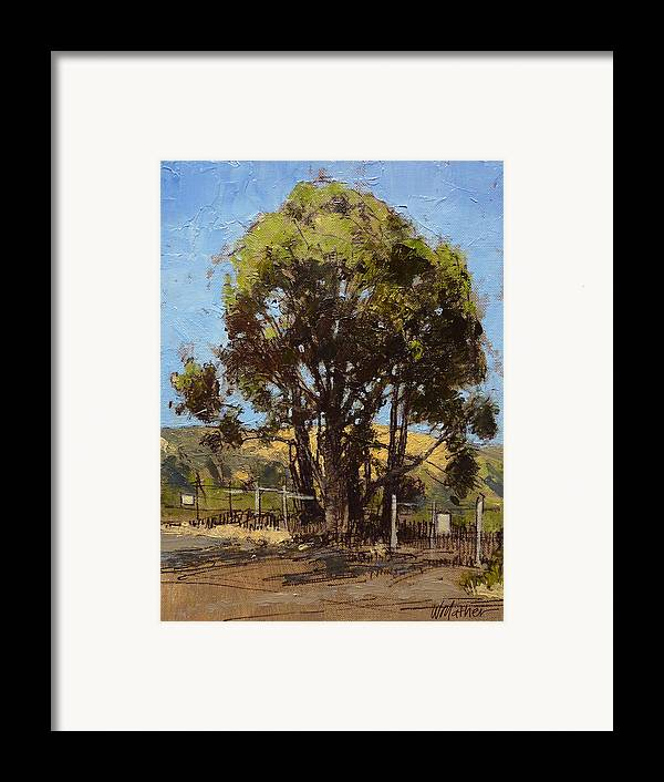 Sunlit Tree Framed Print featuring the painting Ferry Point by Bill Mather