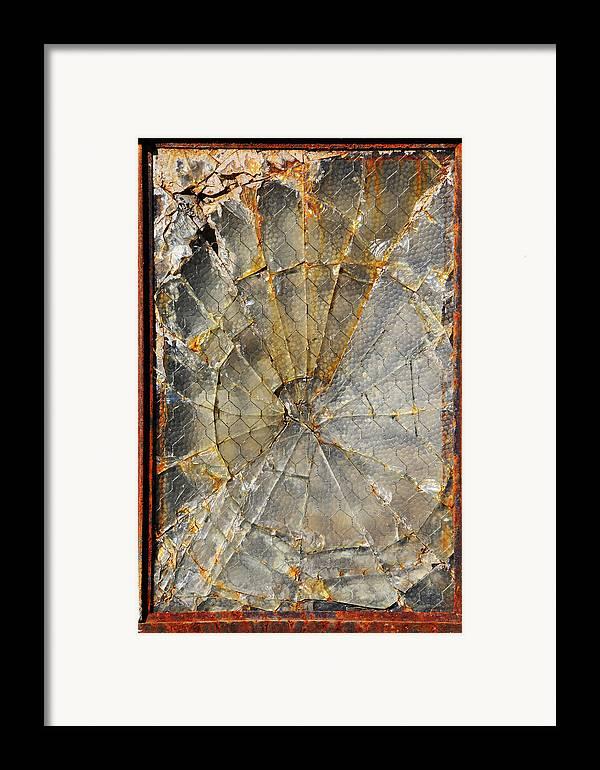 Fibonaccis Muse Framed Print featuring the photograph Fibonaccis Muse by Skip Hunt
