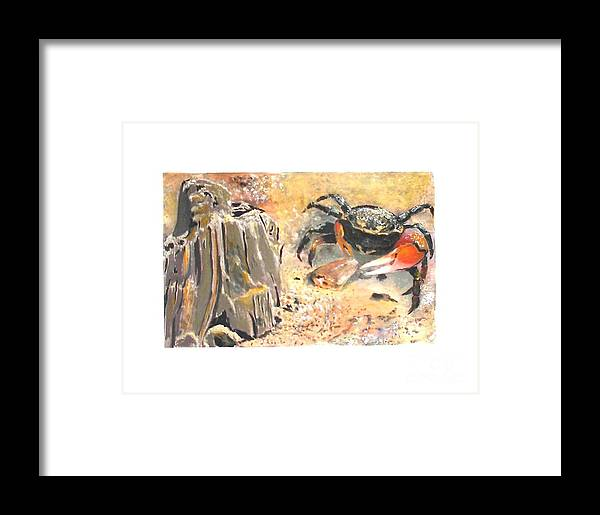 Crab Paintings Framed Print featuring the painting Fiddling Around by Sibby S