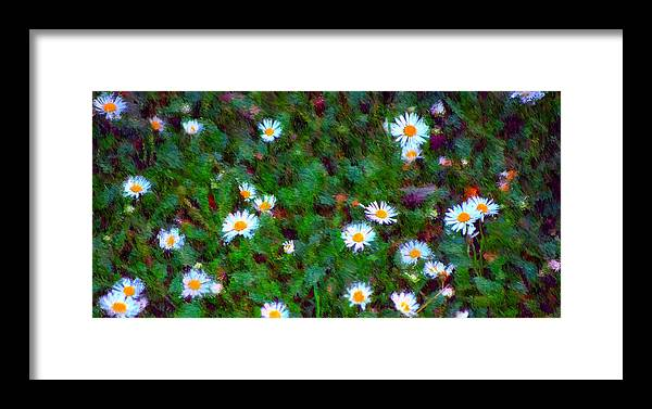 Digital Photograph Framed Print featuring the photograph Field Of Daisys by David Lane