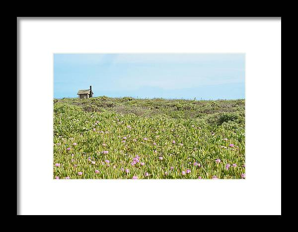 House Framed Print featuring the photograph Field Of Flowers by Michael Simeone