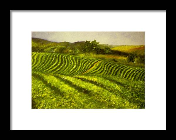 Landscape Framed Print featuring the painting Fields Cat.508 by Erica Garrett