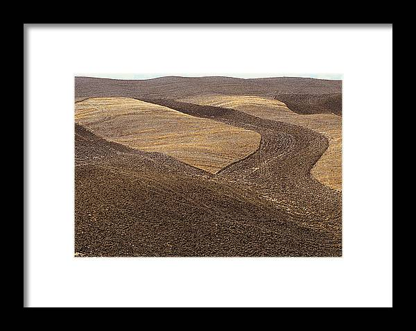 Tuscany Framed Print featuring the photograph Fields Of Tuscany by T Monticello