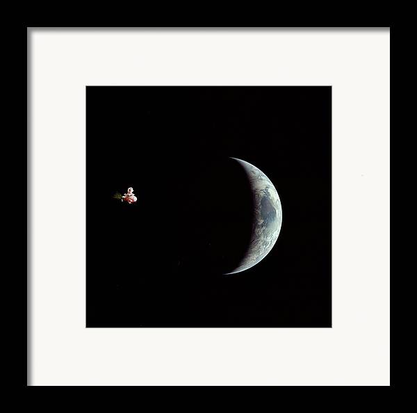 Animal Framed Prints Framed Print featuring the photograph Fifi In Space by Michael Ledray