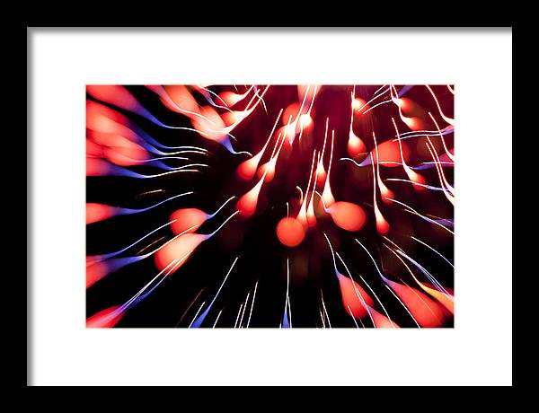 Fireworks Framed Print featuring the photograph Fire Tadpole K860 by Yoshiki Nakamura