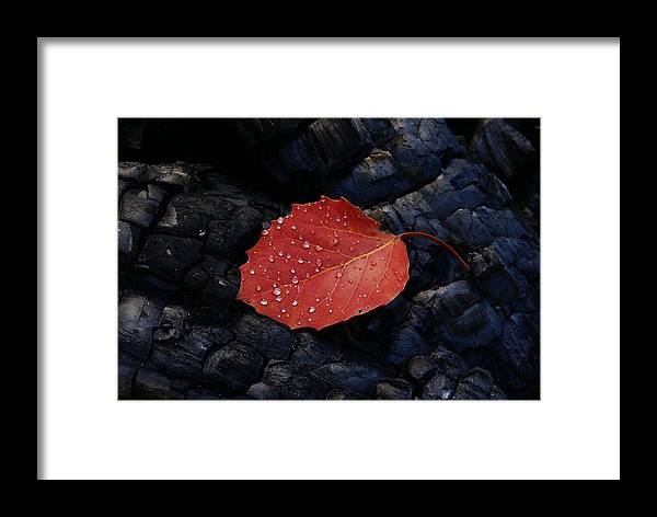 Wood Framed Print featuring the photograph Fireplace by Andreas Freund