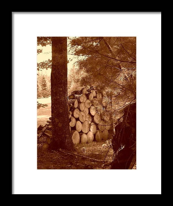 Firewood Framed Print featuring the photograph Firewood by Peter Mowry
