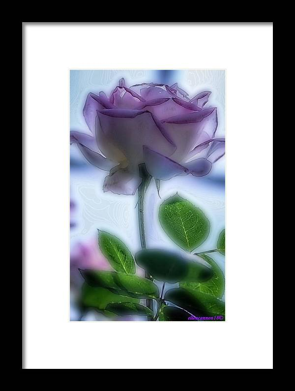 Floral Framed Print featuring the digital art First Blush by Ellen Cannon