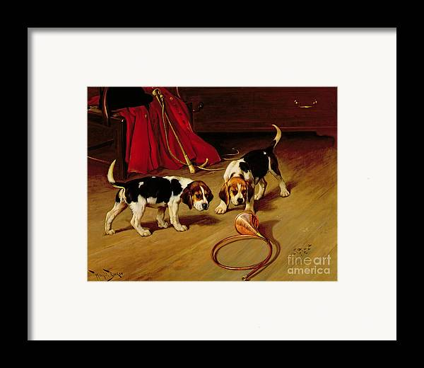 Beagle; Hound; Crop; Whip; Horn; Puppies; Hunt Framed Print featuring the painting First Introduction by Wright Barker