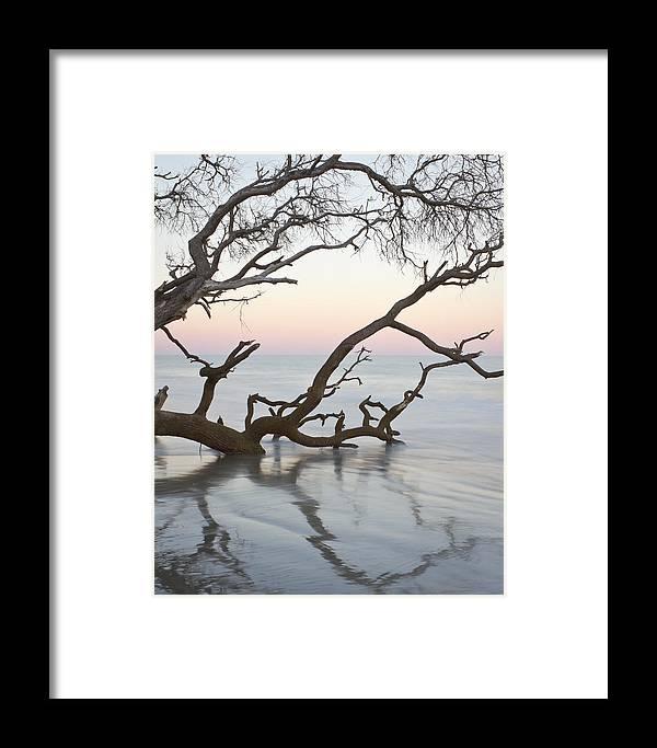 Sunrise Framed Print featuring the photograph First Light - Hunting Island South Carolina by Bill Swindaman