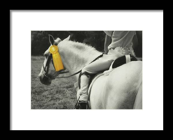 Horse Framed Print featuring the photograph First Show Yellow by JAMART Photography