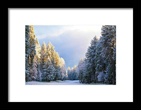 Snow Framed Print featuring the photograph First Snow Fall by Pamela Patch