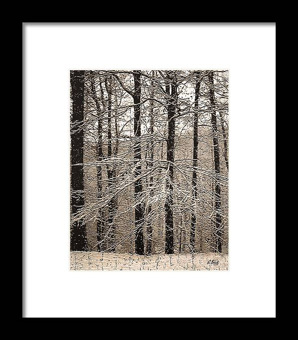 Winter Landscape Oak Trees Snow Snowy Forest Rural Country Woods Gordon Beck Art Framed Print featuring the photograph First Snow by Gordon Beck