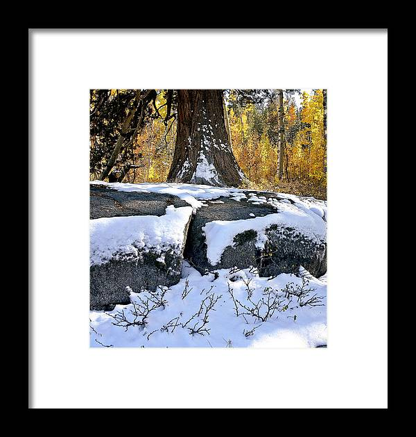 California Landscape Art Framed Print featuring the photograph First Snow by Larry Darnell