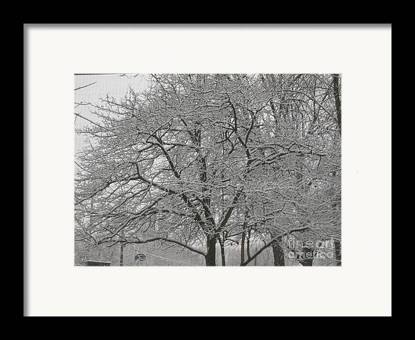 Framed Print featuring the photograph First Snowfall Of The Season by Barb Montanye Meseroll