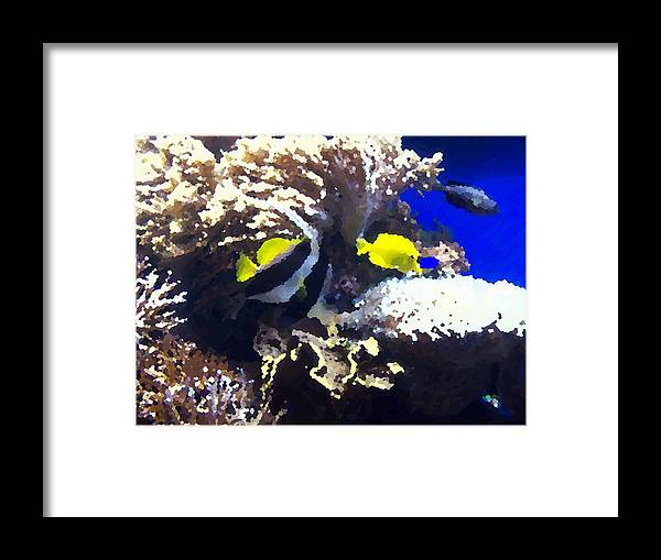 Fish Framed Print featuring the digital art Fish by Rodger Mansfield