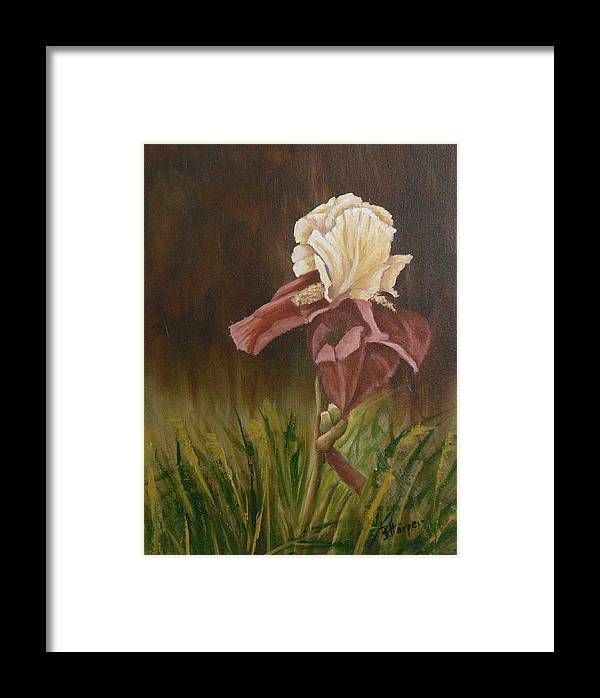 Floral Framed Print featuring the painting Flaming Bearded Iris by Barbara Harper