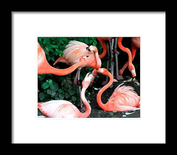 Flamingo Framed Print featuring the digital art Flamingo Dance by Leo Malboeuf