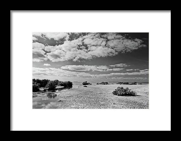 Bay Framed Print featuring the photograph Flamingo Point by Rudy Umans