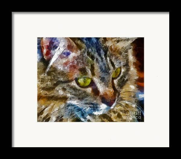 Kittens Framed Print featuring the digital art Fletcher Kitty by Marilyn Sholin