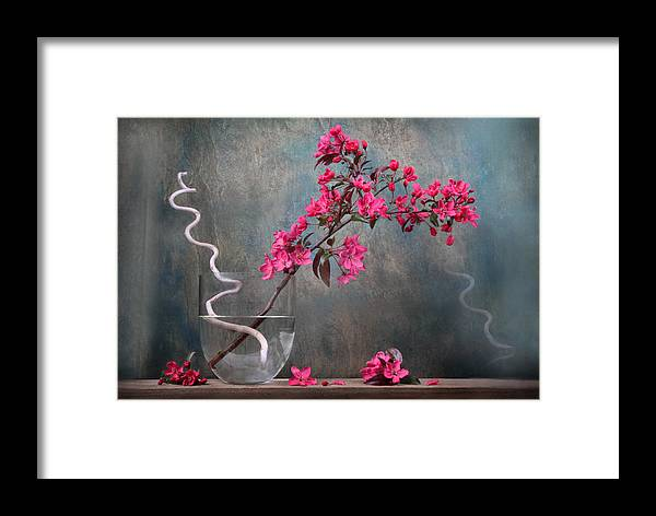 Floral Framed Print featuring the photograph Fleur by Manfred Lutzius