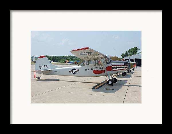 Dog Framed Print featuring the photograph Flight Line by Jame Hayes
