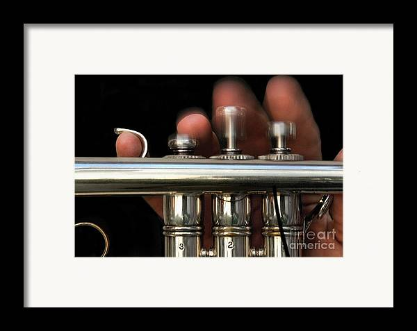 Trumpet Framed Print featuring the photograph Flight Of The Bumblebee by Dan Holm