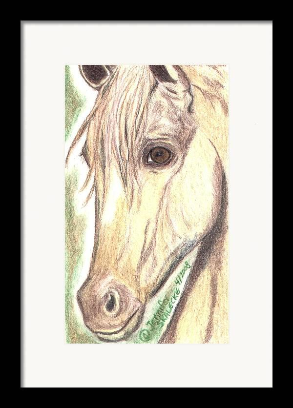 Horse Framed Print featuring the drawing Flirt by Jennifer Skalecke