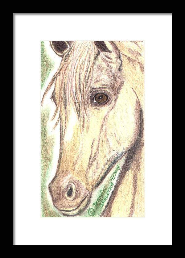 Horse Framed Print featuring the drawing Flirt by Jennifer Skalecke