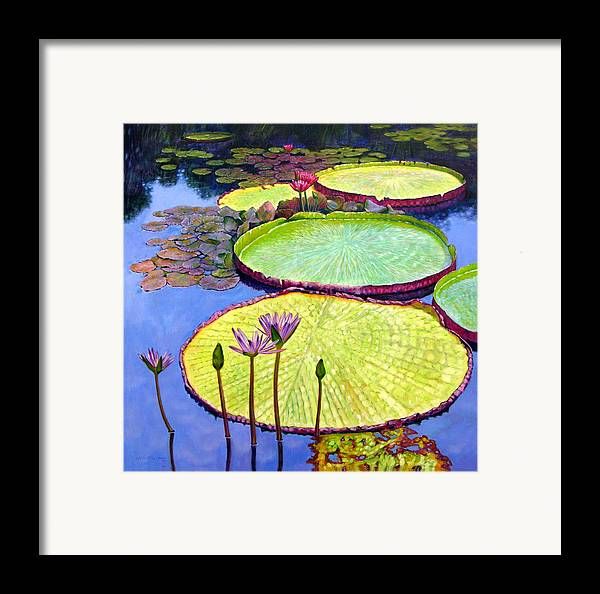 Garden Pond Framed Print featuring the painting Floating Galaxies by John Lautermilch