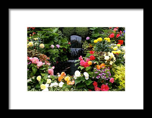 Floral Framed Print featuring the photograph Floral Bless by Sonja Anderson