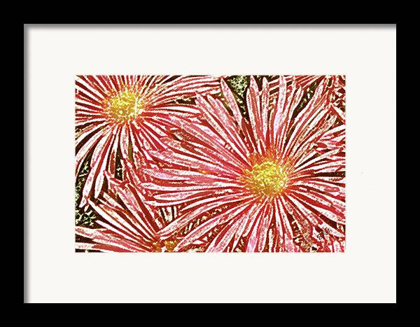 Ice Plant Flowers Framed Print featuring the photograph Floral Design No 1 by Ben and Raisa Gertsberg